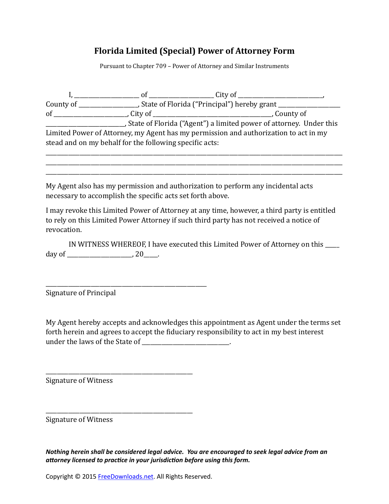 Download Florida Special Limited Power Of Attorney Form