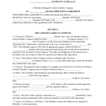 Download Llc Operating Agreement Templates Pdf Rtf Word